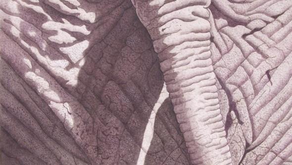 Elephant Landscape - Wildlife Watercolour